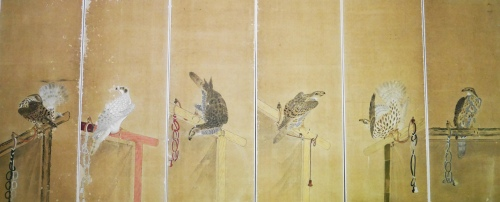falconmakuris-(2)