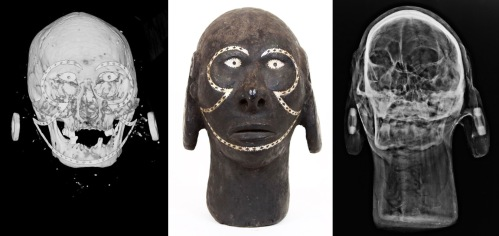 solomonSkull